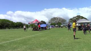 whitfield sc gold 10g vs pipeline 10g may072017