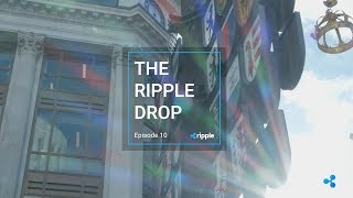 The Ripple Drop - Episode 10