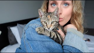 I ADOPTED A KITTEN!!! | Vlog