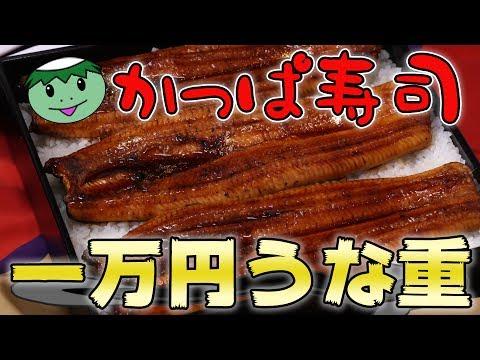 【かっぱ寿司】1万円の巨大うな重を食べきるまで帰れません!