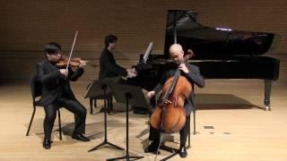 """Voertman Piano Trio playing Dvorak Piano Trio No.4 """"Dumky"""" 3 mov"""