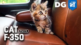 CAT Approved! OBS F350 Crew Cab Gets a King Ranch Upgrade | #FTreeKitty [EP5]