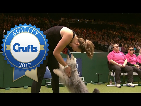 Agility Championship - Round 2 Part 2 | Crufts 2017