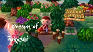 Animal Crossing New Leaf I Dream of Takeshi