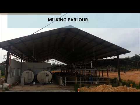 LINGGI DAIRY FARM BY REDAGRI FARM SDN BHD