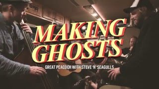 making ghosts by great peacock feat steve39n39seagulls live