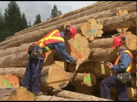 2017 Pioneer Log Homes Of Bc