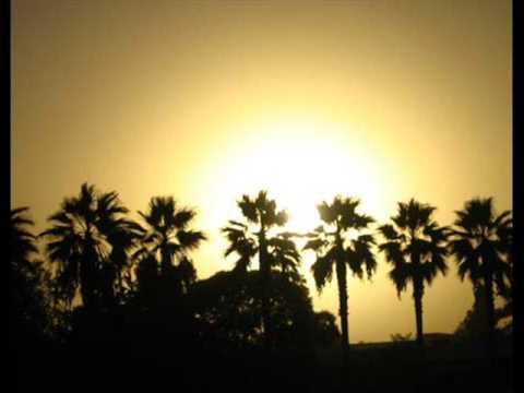 MOTORPSYCHO- GO TO CALIFORNIA