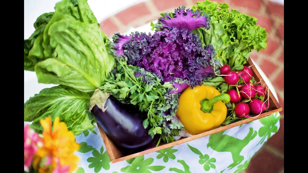 adelgazar comiendo verduras de puerto rico