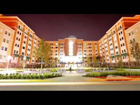 Best 10 Top Universities In Florida (Top Universiteiten in Florida)