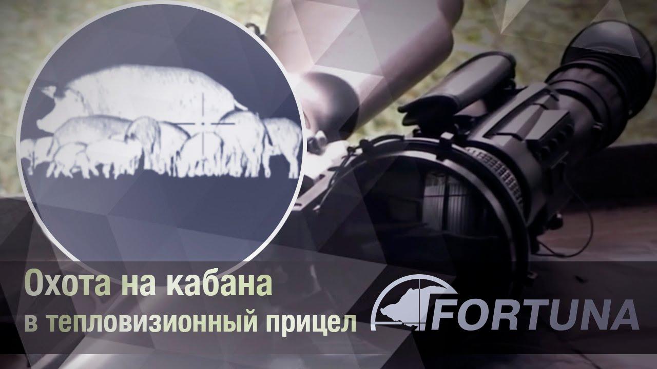 Товары для охоты в украине ➤ besplatka. Ua поможет купить или продать товары для охоты без посредников быстро и недорого ✅ доска объявлений besplatka. Ua.