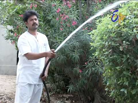 Bharyamani On 9th  January 2013 - Episode No 1162
