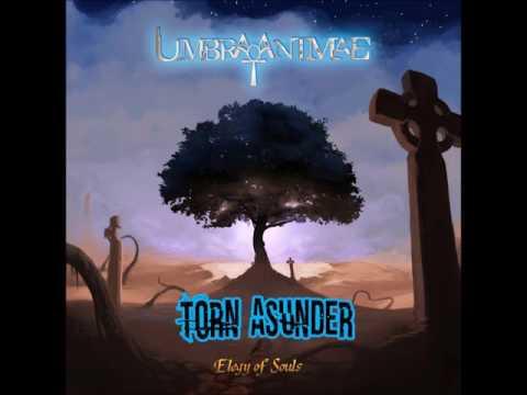 Umbra Animae - Casualty (Lyrics)