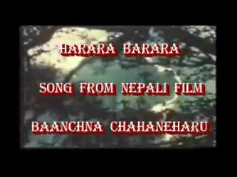 Harara Barara Film song video Sargam Digital Studio Darjeeling