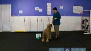 How To Train Your Dog For A Rally-o Show : 270-degree Turn At A Rally Obedience Show
