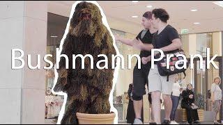BUSHMAN PRANK🍃 Braunschweig #1