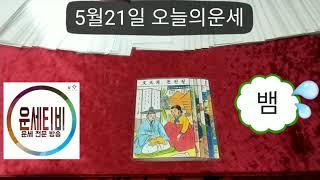 월요일 오늘의운세 2018년 5월21일 띠별 타로운세 마스터 운세방송