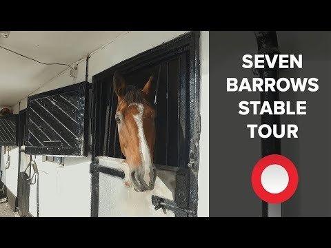 Nicky Henderson's stars of Seven Barrows