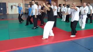 太気拳指導 in フランス(腕回し練り) Taikiken Seminar in France (by Sensei Shimamura) 武術 武道 格闘技 護身 関東 栃木