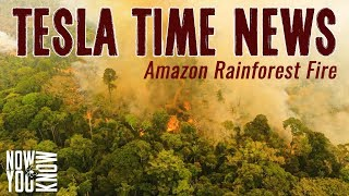 Tesla Time News - Amazon Rainforest Fires