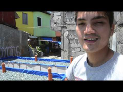Episode 3: GK Sta Rita Urban Farm