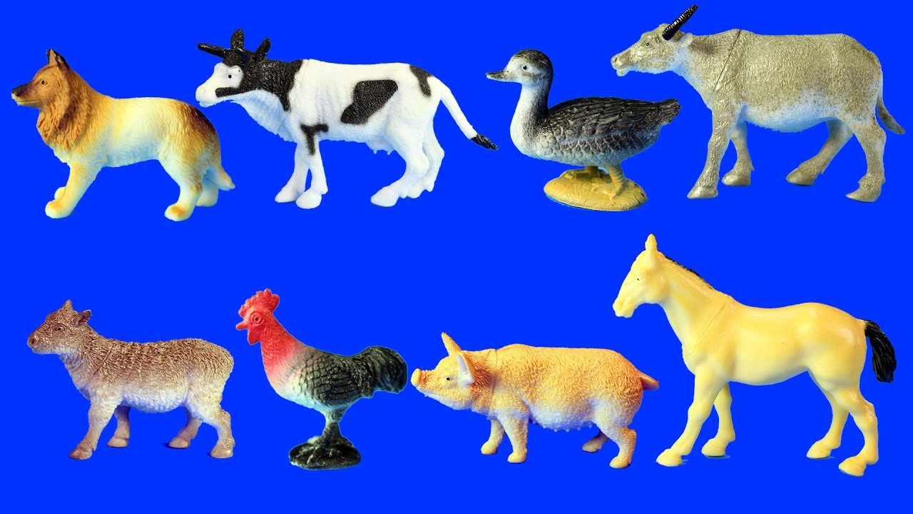 Learn Farm Animals Names For Kids Animal Toys Video Youtube