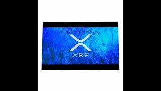 XRP  ADA  VET NEWS