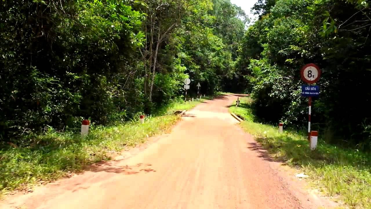 Kết quả hình ảnh cho rừng phú quốc