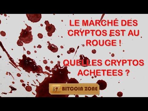 Le Marché Des Cryptos Est Au Rouge ! Quelles Cryptos Achetées ?