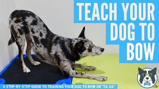Take a Bow: Teach Your Dog to Bow