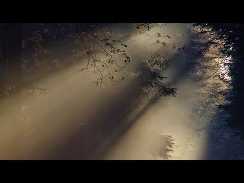 Edvard Grieg ~ Morning Mood