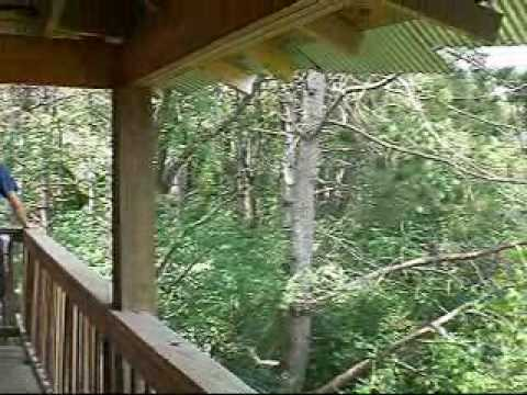 Epic Systems\u0027 Treehouse on Verona Campus, Wisconsin - YouTube