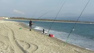 Pesca all'orata col pasturatore e il bigattino