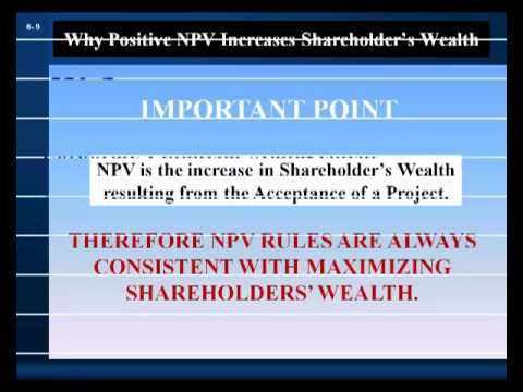 Investment Decision Rules Part 1: Net Present Value and Internal Rate of Return