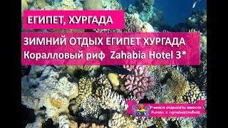 ЗИМНИЙ ОТДЫХ В ЕГИПТЕ| Коралловый риф, подводный мир Хургада 2020