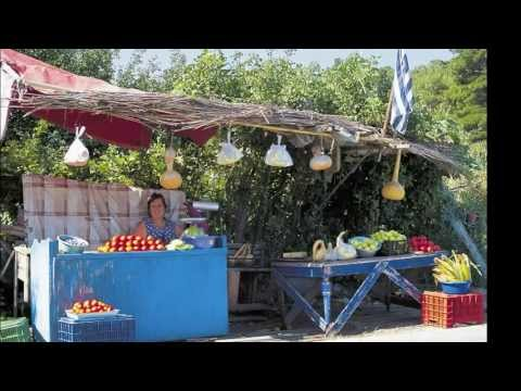 Traveling in Lesvos, the absolute guide.