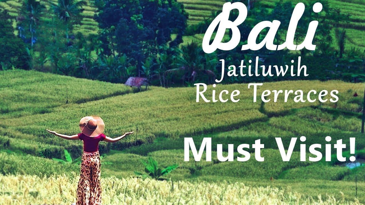 Jatiluwih Rice Terraces Travel Guide Bali Travel Series Youtube