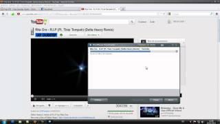 Como Convertir un Video del RealPlayer a fotmato MP3. (Solo Audio)