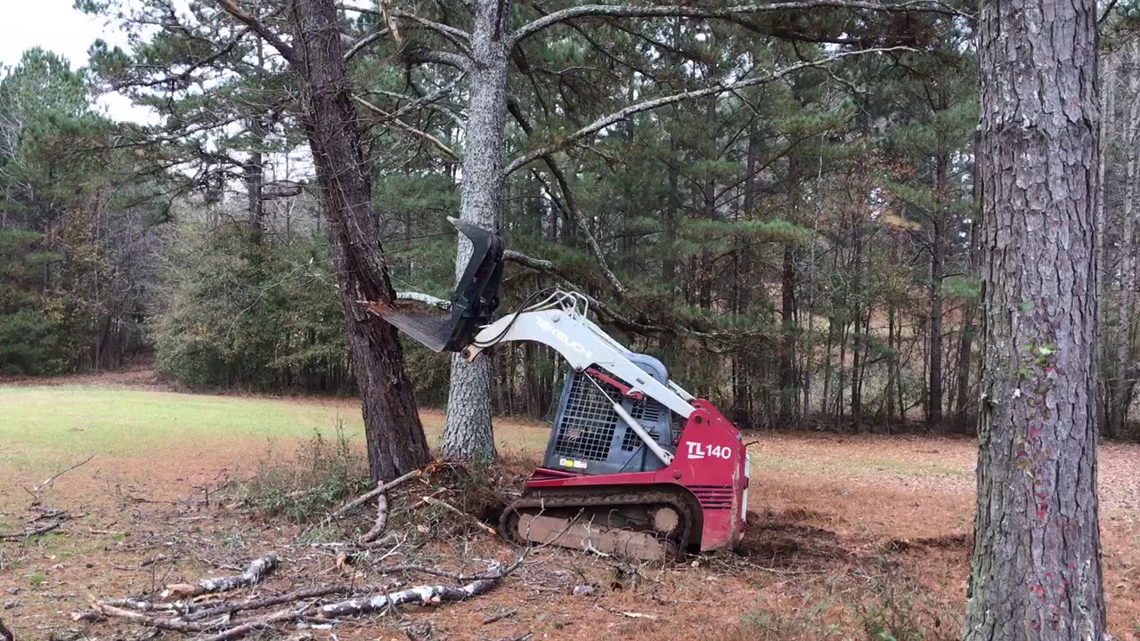 Takeuchi tl 140 pushing over a dead tree