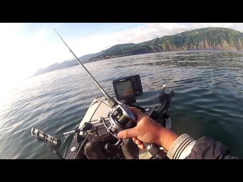 "Kayak Fishing Shelter Cove ""too easy"""
