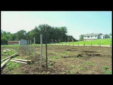 Ho Chunk Tribe Uses Greenhouses to Grow Organic Food | David Lynch Foundation