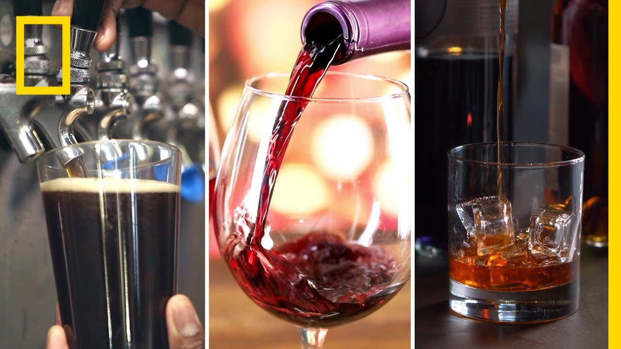 Alcohol 101 | National Geographic