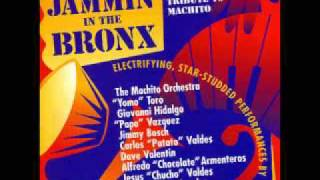 Mambo America - Jamming in the Bronx