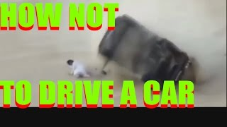 extreme car crashes - car crashes too extreme - deadly crashes of cars - 10 minute car crashes