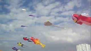 Drachen im Wind Côte Opale Cerf Volant