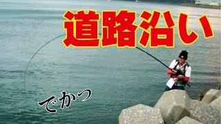 テトラポッドのジグ釣りで一撃デカイのきて食べた! thumbnail