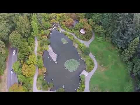 Seattle's Japanese Garden