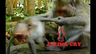 MG! Jade Reject Milk Baby Monkey Julina Cry silent angry Her Mom