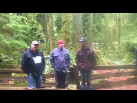 The bunker boys in a large stand of timber