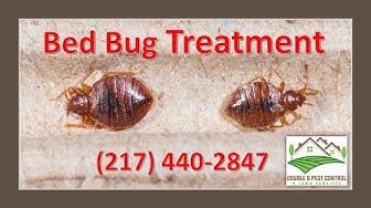 Bed Bug Treatment Palmyra Missouri